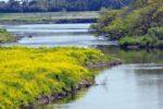阿武隈川のバス釣りポイント【オススメの釣り方もご紹介】