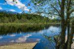 青野ダム(千丈寺湖/兵庫県)のバス釣りポイント【オカッパリにオススメ】