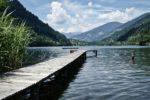 西湖(富士五湖)のバス釣りポイント【オススメの釣り方もご紹介】