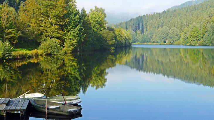 小森ダム(三重県)のバス釣りポイント【オススメの釣り方も紹介】