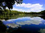兵庫県南部のバス釣りできる野池【オカッパリにオススメ】